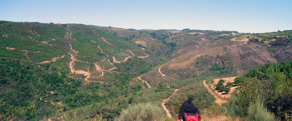 Camino-de-santiago-portugués-destacada