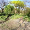 Paseo ecológico