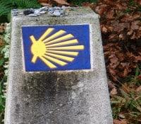 ¿Pensando en hacer el Camino de Santiago?