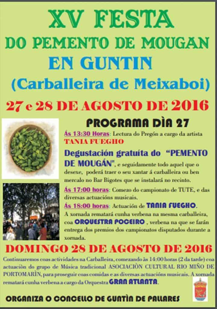 fiesta-del-pimiento-3221556458