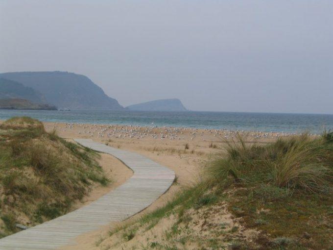 Playa de San Román / Area Grande